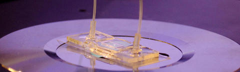 Image of microfluidics setup