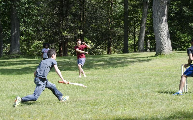 2015 Annual cricket match.